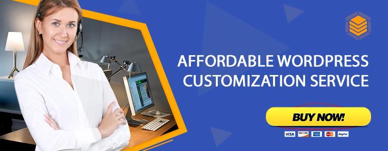 WordPress Customization Service