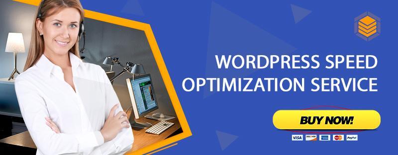 WordPress Speed Optimization Service