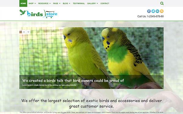 Birds WordPress Theme