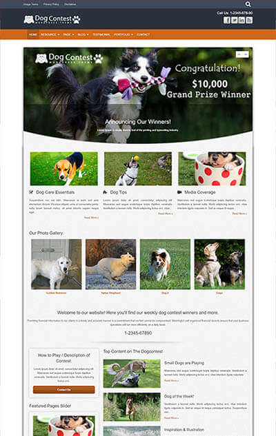Dog Contest WordPress Theme
