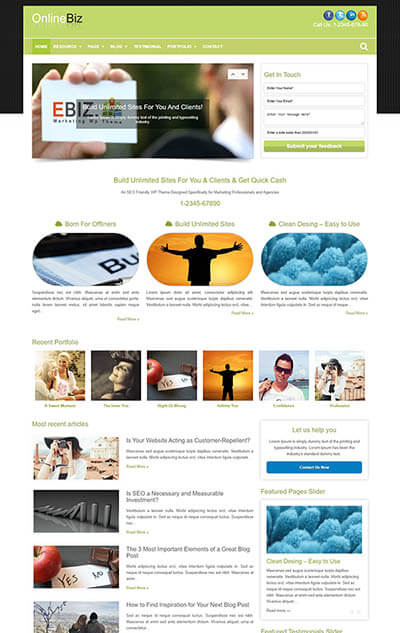 OnlineBiz Marketing WP Theme