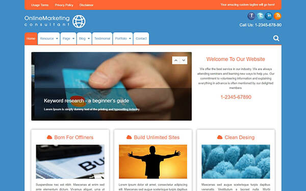 Online Marketing WordPress Theme