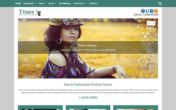Titans Portfolio WordPress Theme
