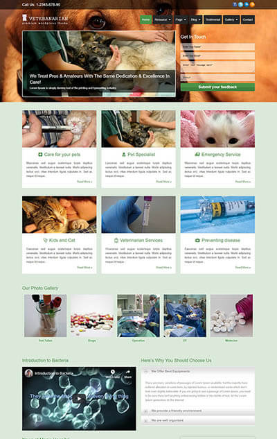 Veterinarian WordPress Theme