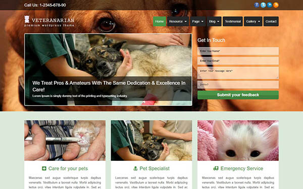Veterinarian WordPress Theme